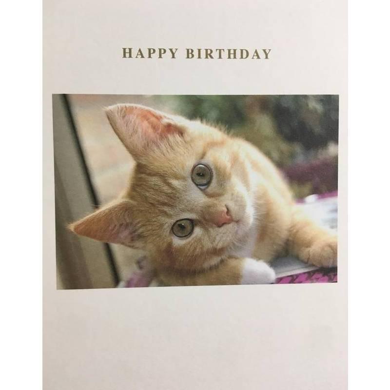 GREETING CARD - BIRTHDAY CAT
