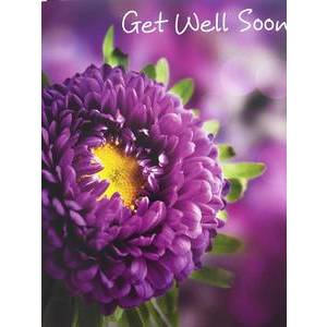 GREETING CARD - GET WELL SOON FLOWER